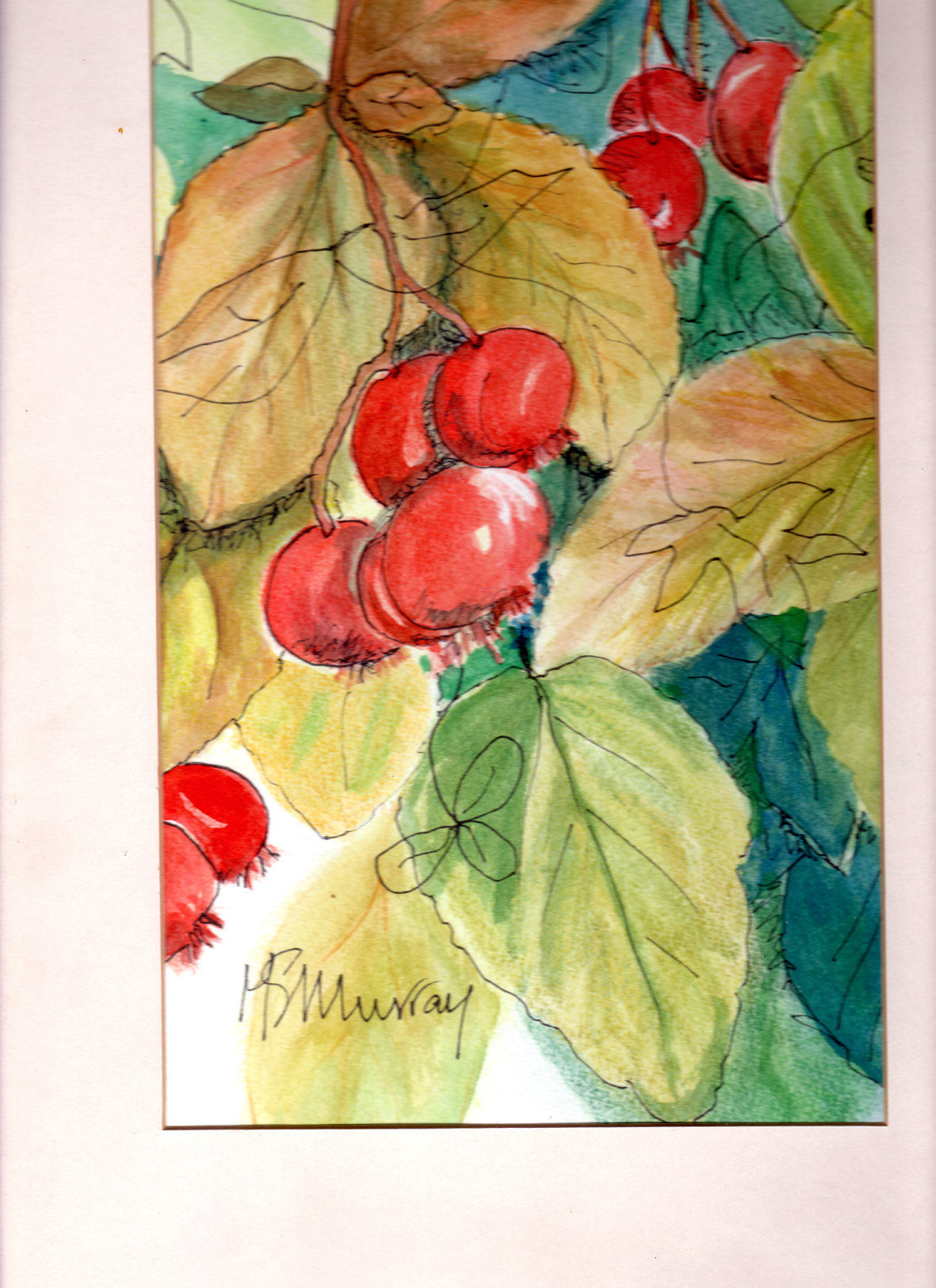 An original mounted watercolour with ink by Margaret Murray. adjustable size